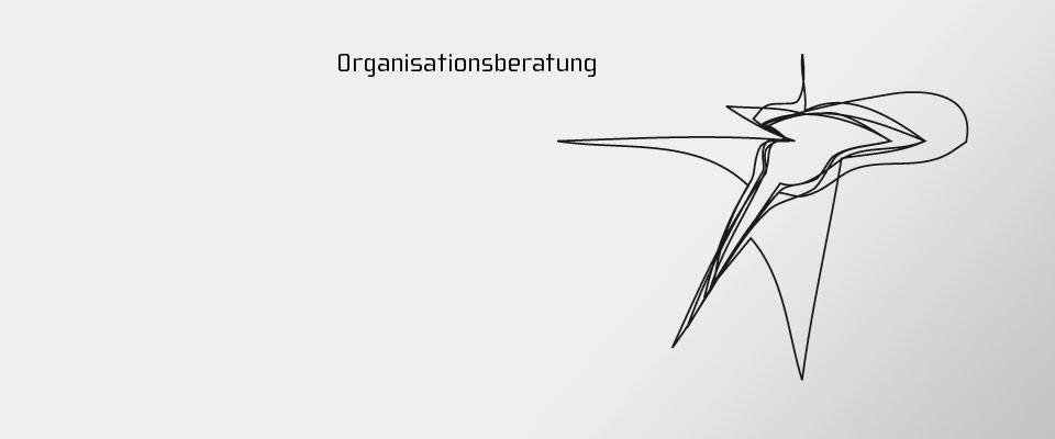 anfranco Organisationsberatung Organisationsentwicklung Teamtraining